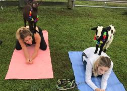 KB in the City: Nashville Goat Yoga