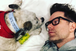 Bobby Bones' Beloved Dog, Dusty, Passes Away
